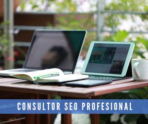 Consultor SEO freelance